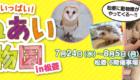 ふれあい動物園 松菱百貨店6階催事場